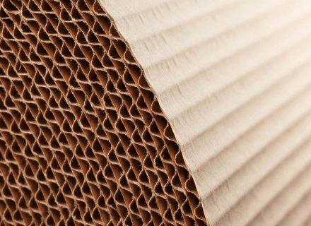 Zellstoff- & Papier-Industrie